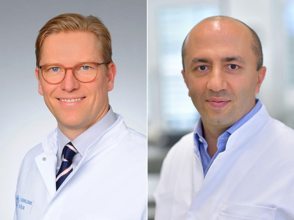 Hpv Assoziierte Krebserkrankungen Im Kopf Hals Bereich Und Bei Hautkrebs Hno Uniklinik Koln