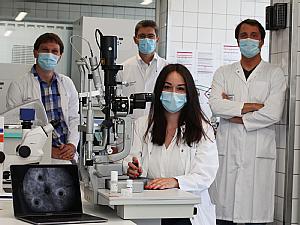 Dr. Michael Schramm, Anne Wolf, Prof. Dr. Thomas Langmann und Dr. Marc Herb im Labor, Foto: Christoph Wanko