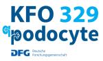 Logo KFO 329