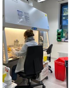Labor, Foto: Uniklinik Köln